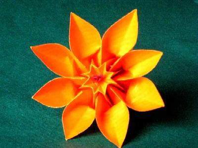 d 39 autres fleurs en origami association masi. Black Bedroom Furniture Sets. Home Design Ideas